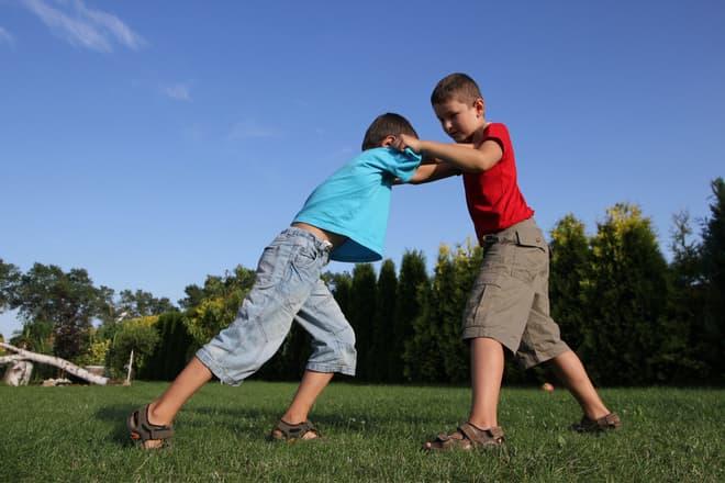 Kinderbande sucht Wels heim