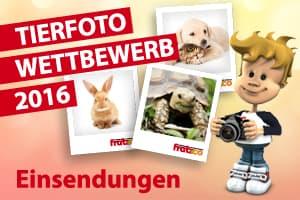 Tierfoto Wettbwerb