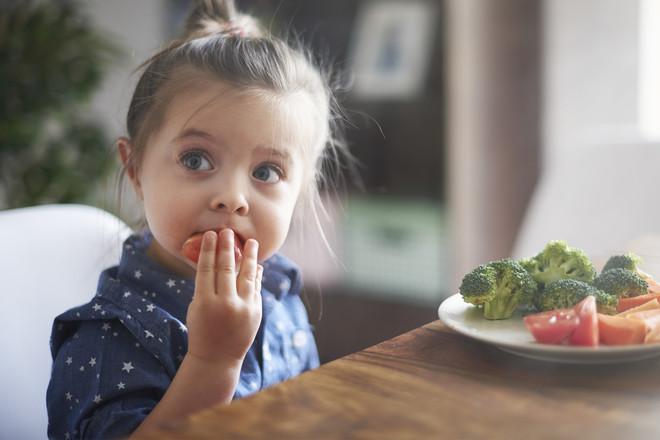 Wie nachhaltig ist das Essen in Schule und Kindergarten?