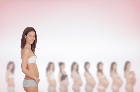 2. Monat: Aus einem Zellhaufen wird ein Embryo